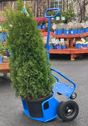Industrial Potwheelz® plant dolly - a plant dolly that would accommodate plant pots of various sizes.
