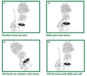 Potwheelz is easy to operate and allows you to move large or small potted plants without exerting a lot of physical effort.