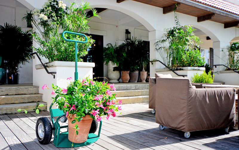 Enjoy the benefits of the Potwheelz plant hand truck - now with an easy-store and transport standard garden version.